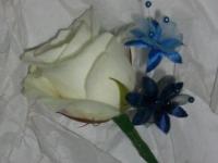 blue_buttonhole